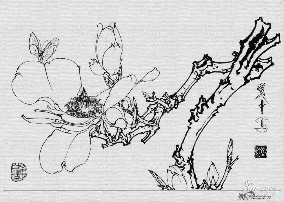 国画名家王道中的花卉白描