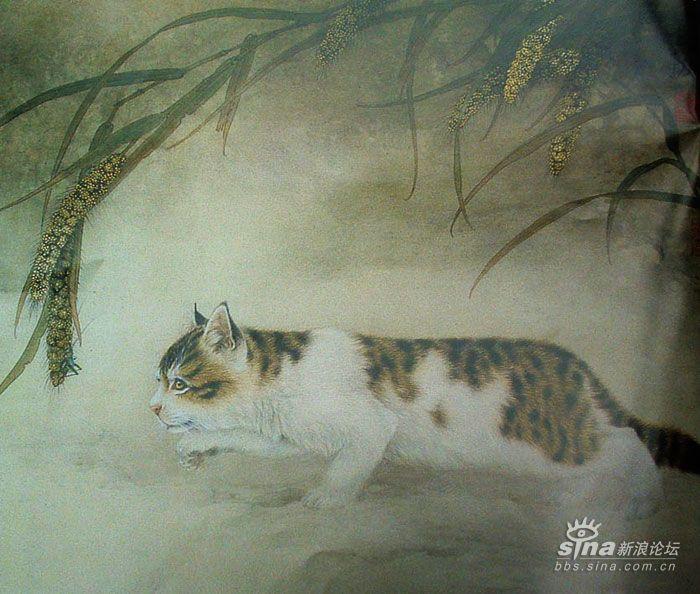 王申勇工笔动物欣赏_艺术长廊