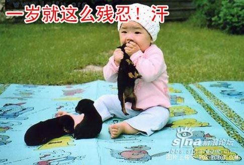 一组搞笑可爱的宝宝图片