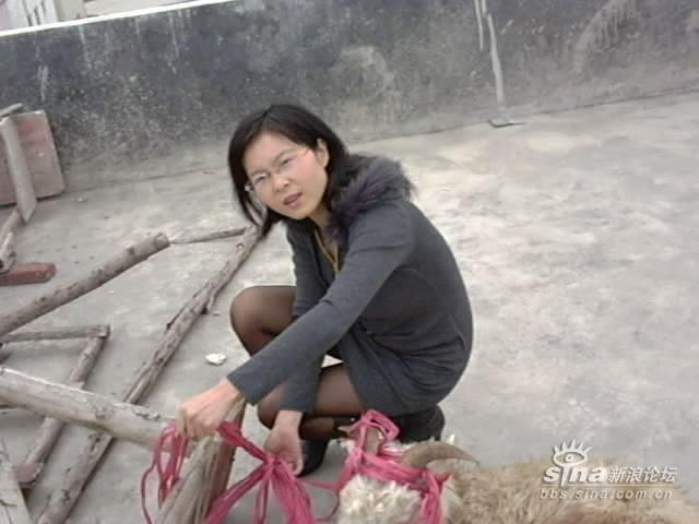 以拍摄虐杀小动物的视频为生的女人