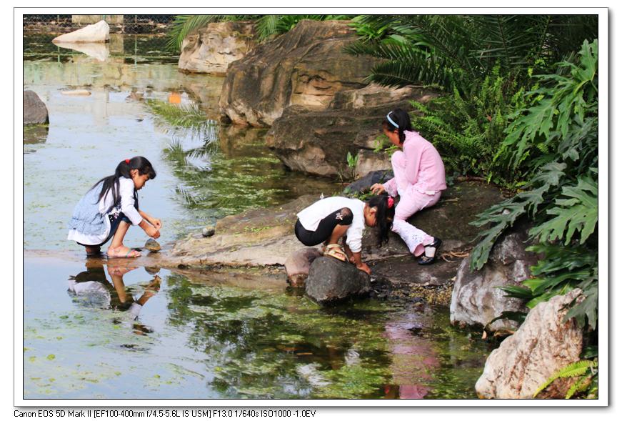 小溪边玩耍的孩子图片